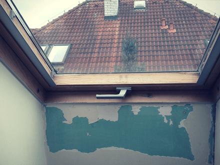 Opravy stěn, malby, obklady